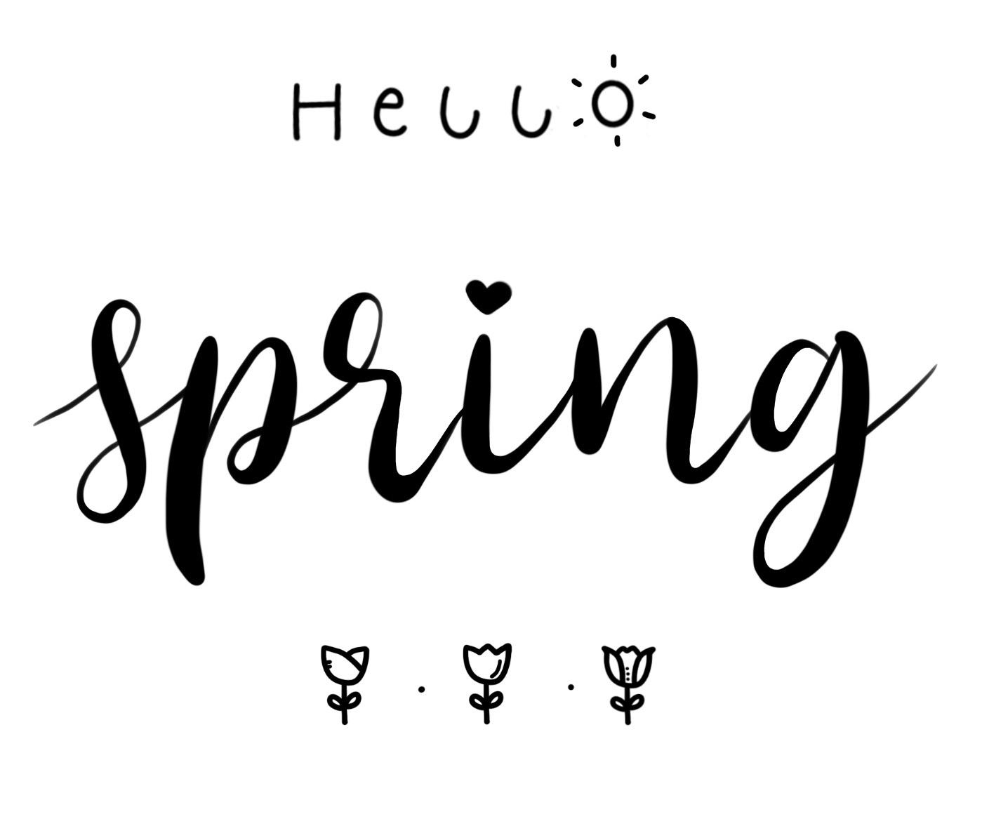 Lettering zum Frühlingsanfang oder auch als Oster lettering geeignet mit Brushpen Lettering und kleinen Frühlings - Icons wie Sonne und Blumen als Dekoration.
