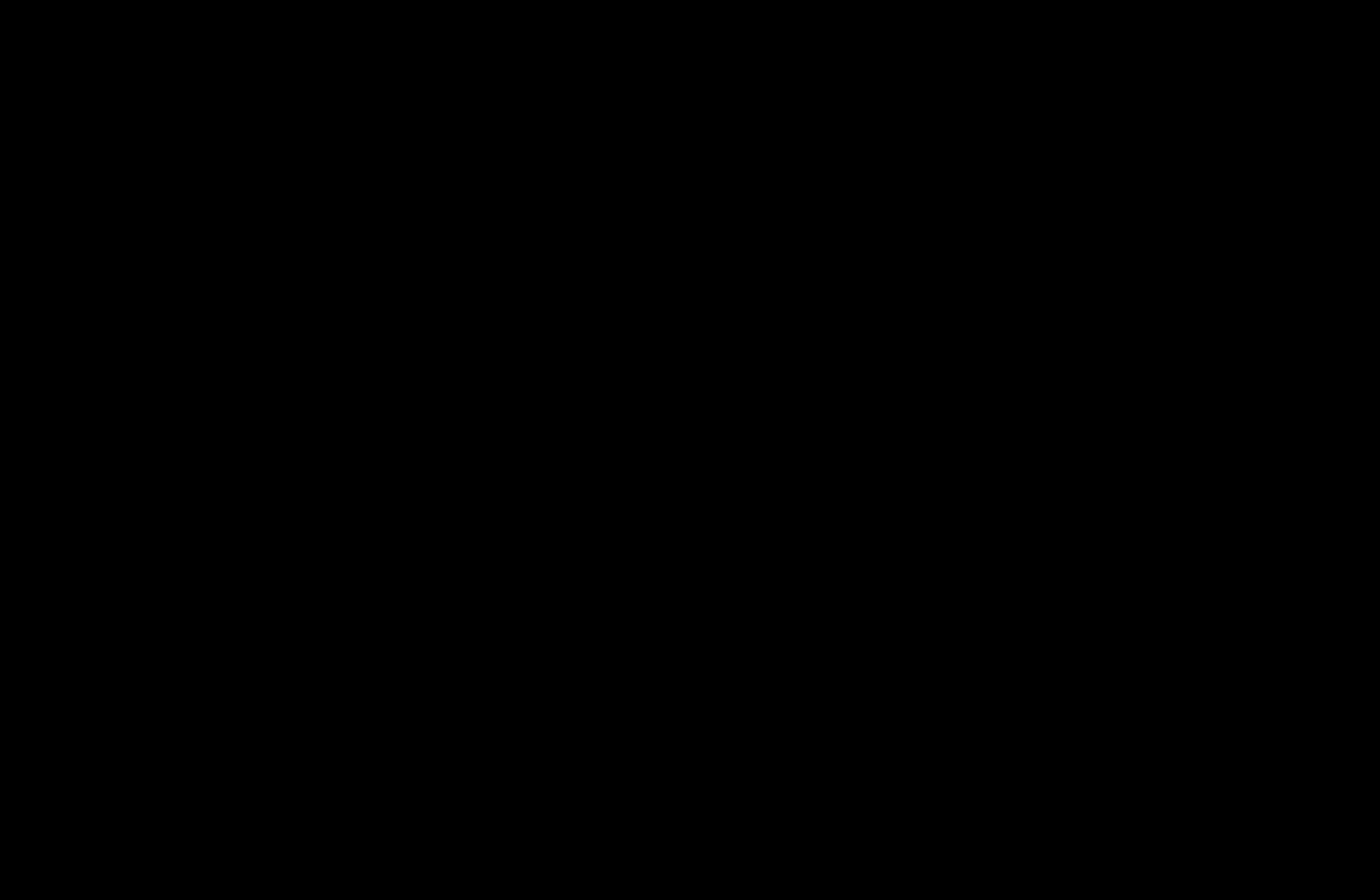 "Brushlettering in schwarz vom Schriftzug ""Happy Birthday"""