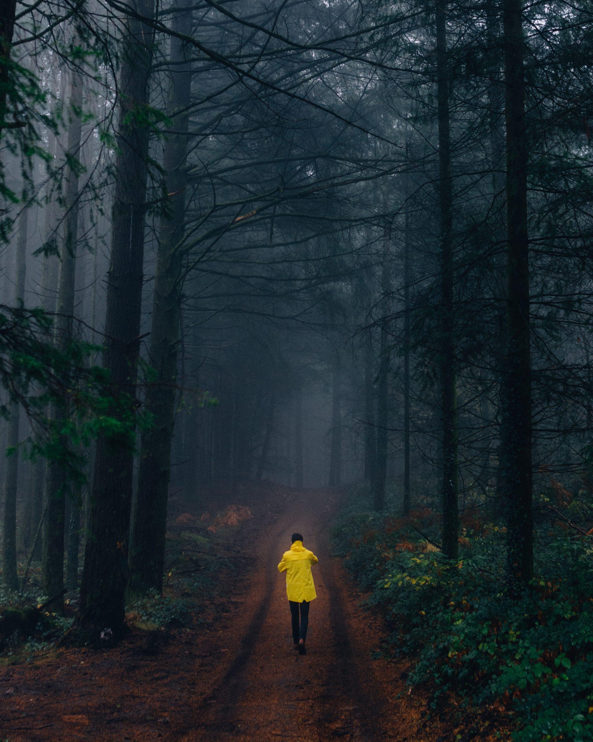 Mensch mit gelber Kacke in dunklem Wald